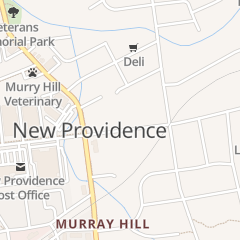 Directions for Skyview Tree Service in New Providence, NJ 483 Central Ave