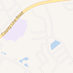 Directions for VIP Pest Control in Wesley Chapel, FL 29243 Birds Eye Dr