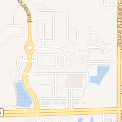 Directions for Green Michael S Dr in Wesley Chapel, fl 2244 Green Hedges Way