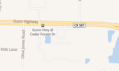 Directions for Allergy, Asthma & Immunology Associates Citrus Park in Tampa, FL 6536 Gunn Highway